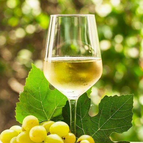 bevibene vini bianchi distribuzione novara milanoovest